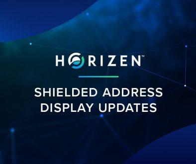 HZ_shielded-address-display-updates