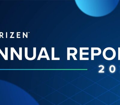 large-2020-annual-report-01